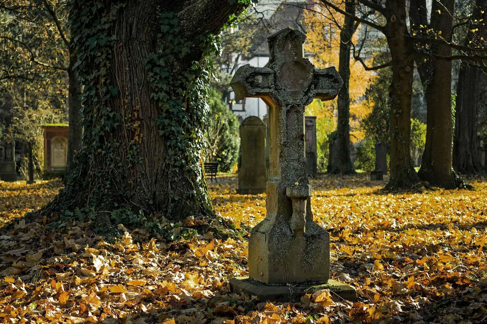 Nagrobek nacmenatrzu jesienią - pogotowie pogrzebowe - zakłady pogrzebowe