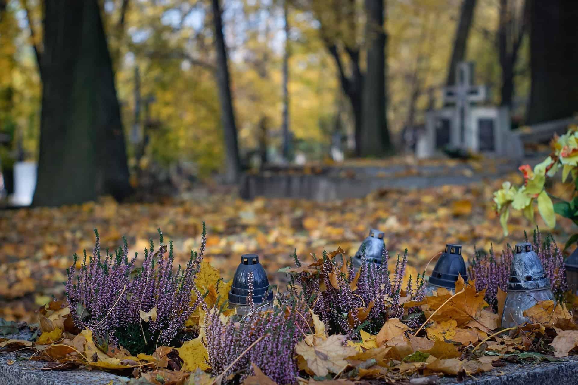 Wszystkich świętych - zaduszki - pogotowie pogrzebowe - zakłady pogrzebowe